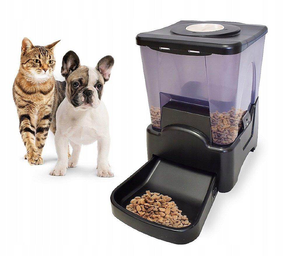 Особенности хранения сухого корма для животных