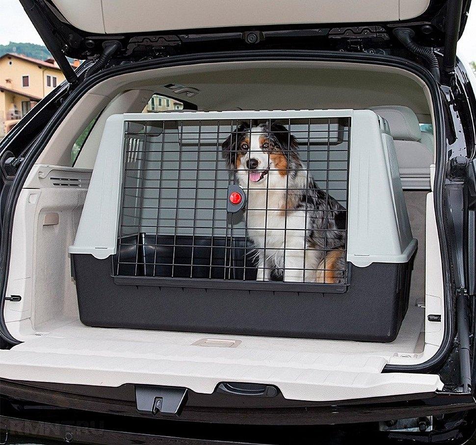 Переноски для собак – для чего они нужны и какими они бывают