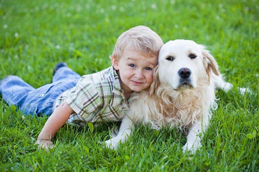 Какую собаку купить ребёнку – наиболее популярные породы