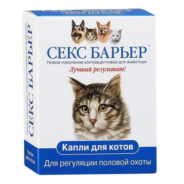 Секс кошек онлайн
